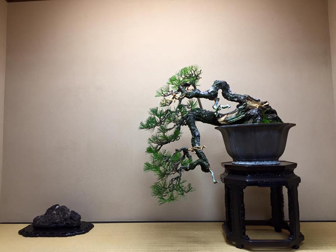 春花園盆栽美術館(東京)