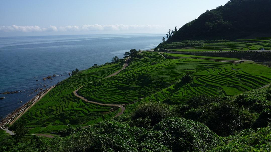 世界農業遺産にも認定された農村風景 白米千枚田(しろよねせんまいだ)