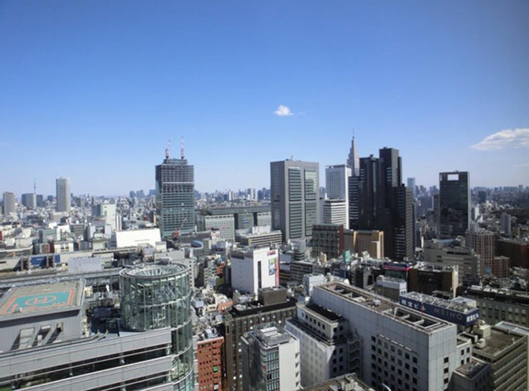 东京京王广场酒店(Keio Plaza Hotel Tokyo)