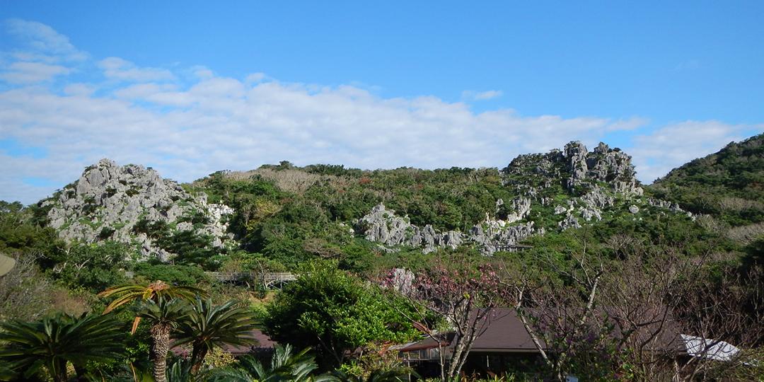 Five Natural Wonders of Okinawa