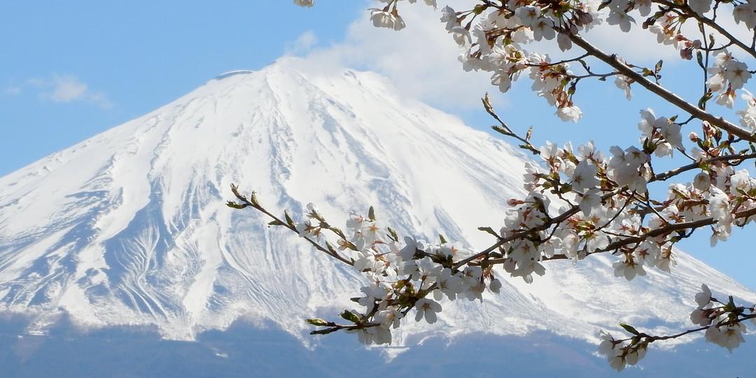 6 Gorgeous Views of Mt. Fuji