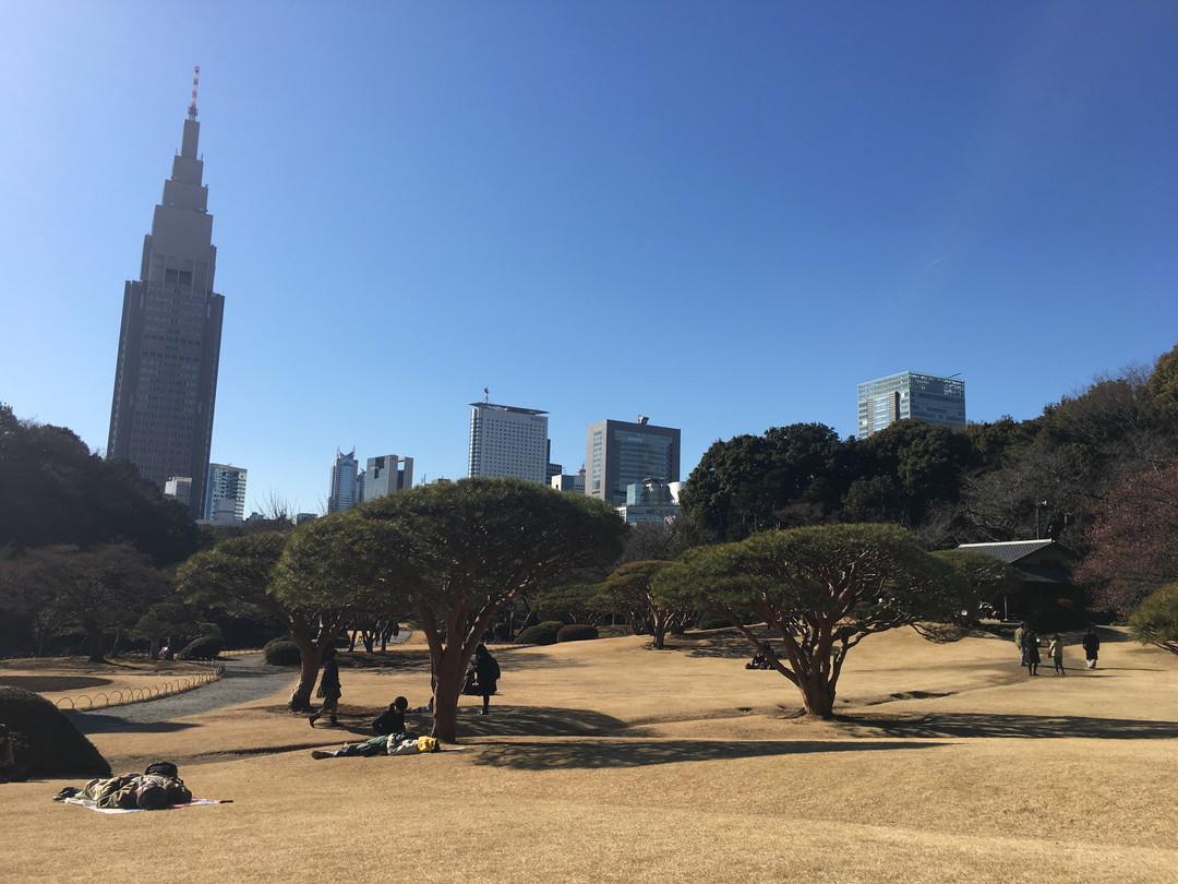 Tokyo's Pretty Face: Shinjuku Gyoen