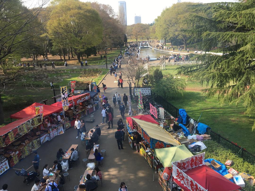 Tokyo's Quirky Face: Yoyogi Park