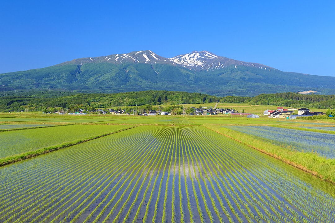 日本第一個以縣為單位擁有地理標識的山形縣