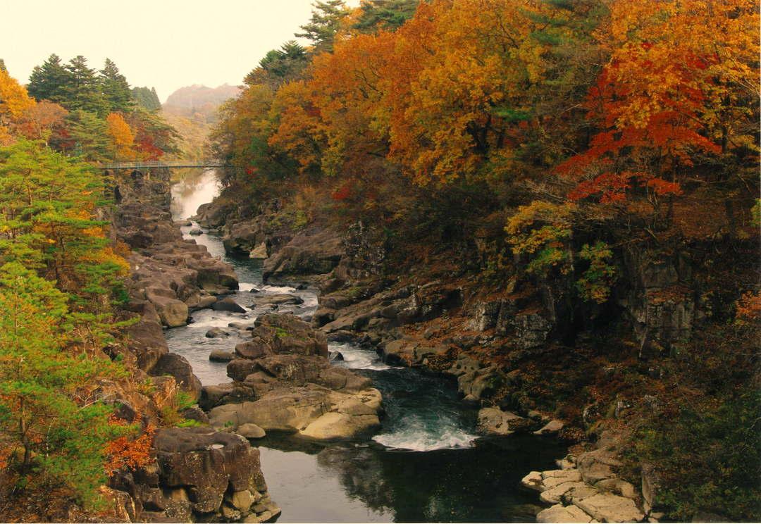 変化に富んだ渓谷美と空飛ぶだんごを楽しむ「厳美渓」