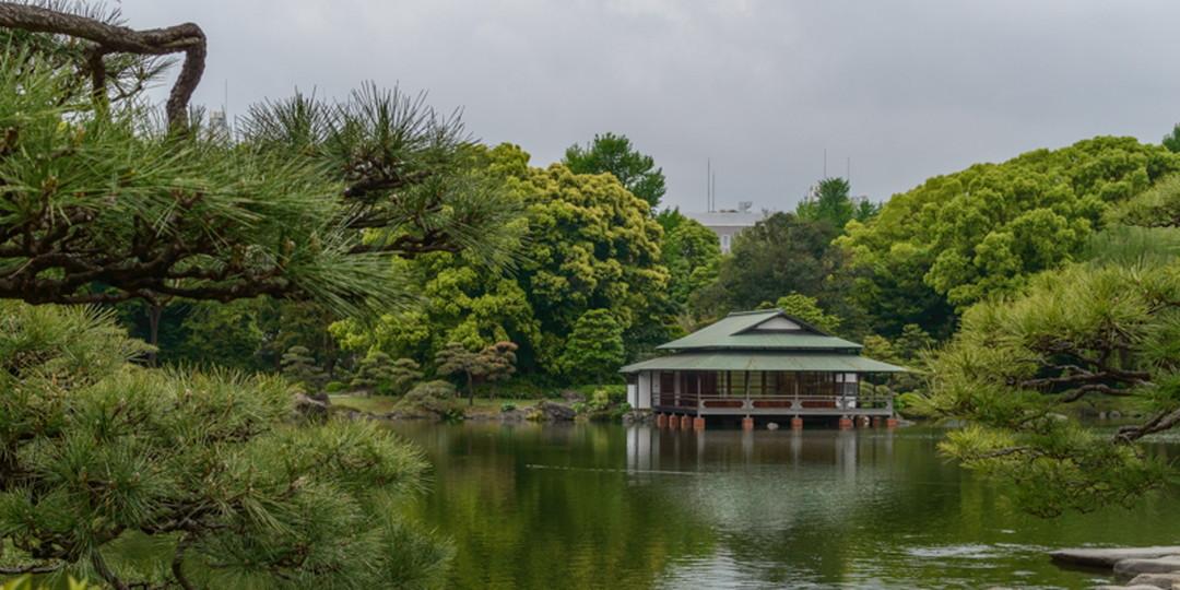 도쿄 시내 최고의 정원 다섯 군데
