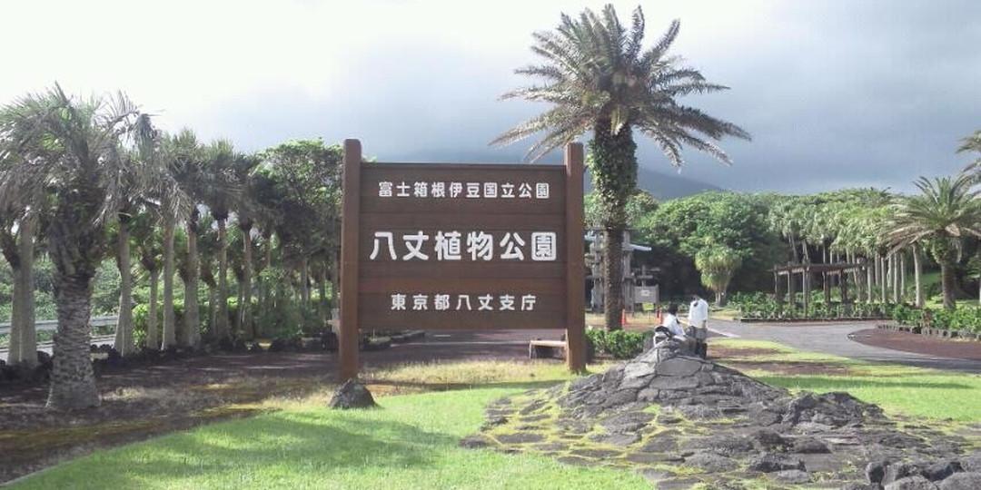 五个应该游览伊豆群岛的理由