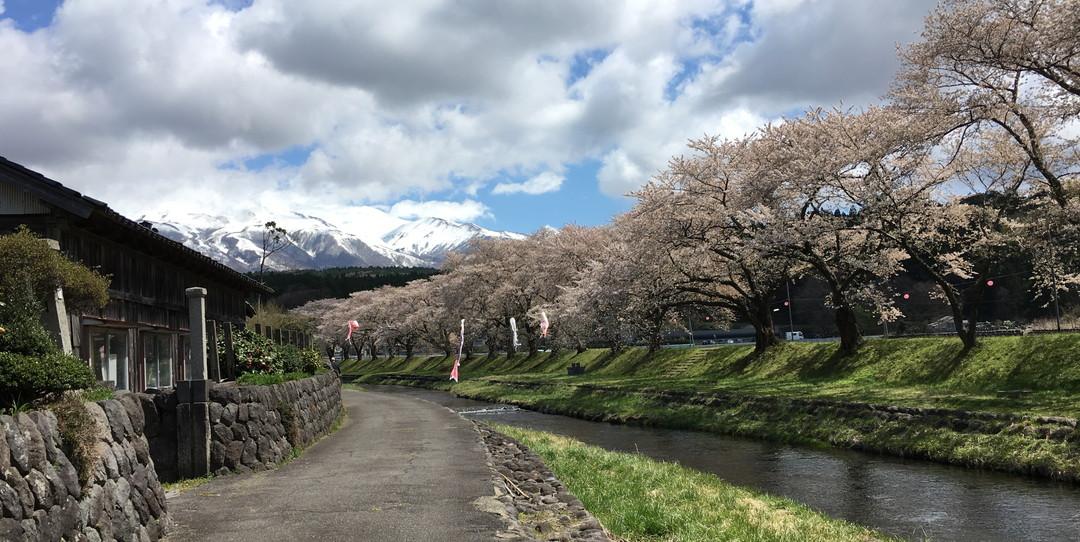 隨著四季感受日本文化的五種方法