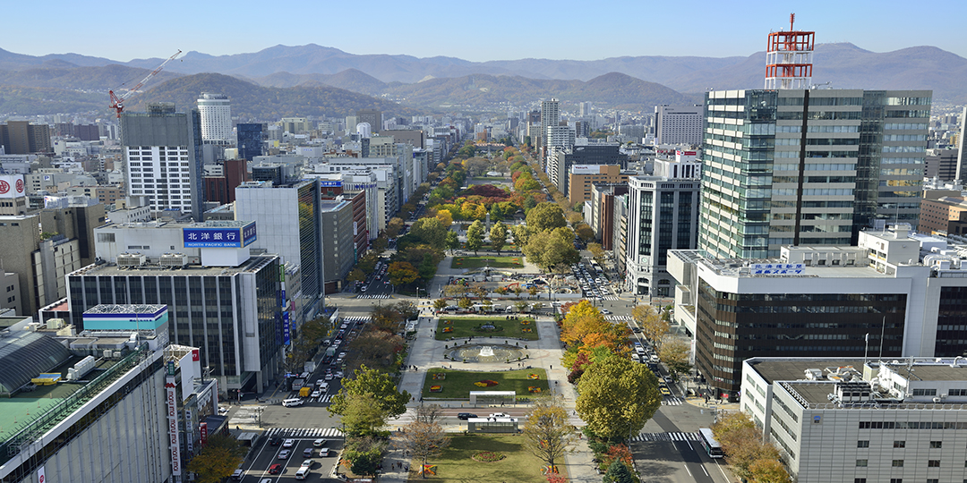 Top 5 streets where you can fully enjoy Sapporo