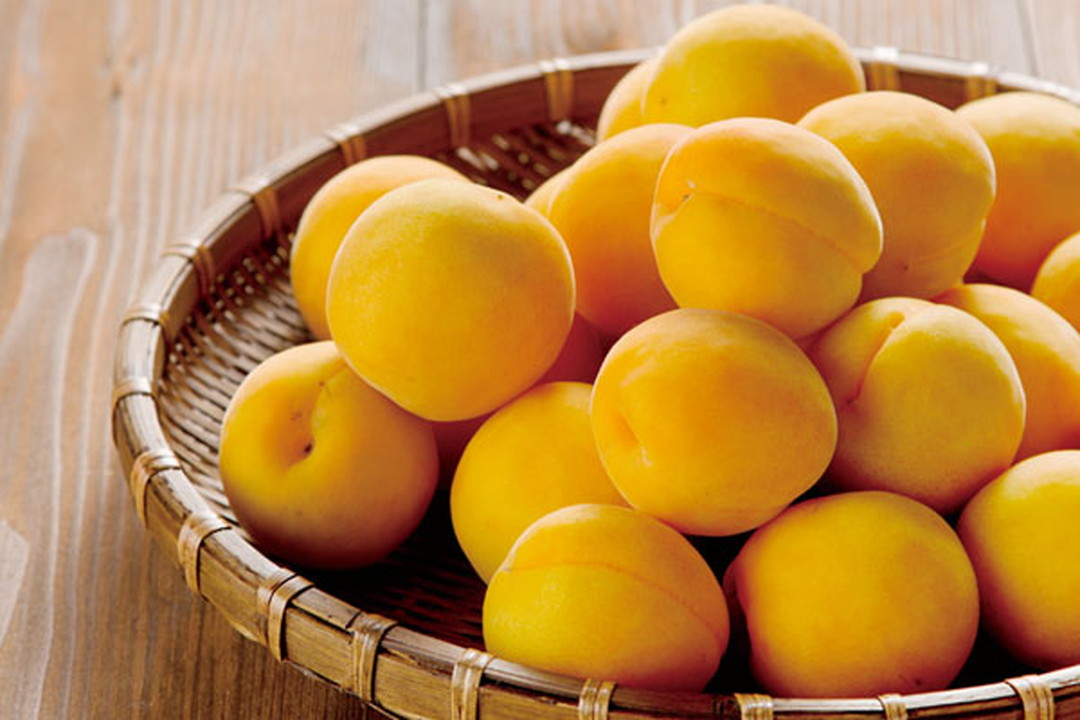 Made from the finest fully ripened Setsuda ume plums