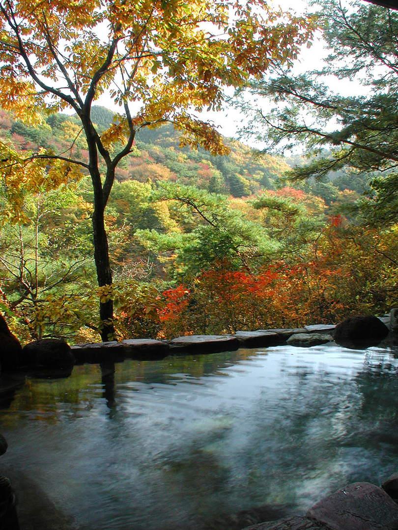【鬼怒川温泉 湯處すず風】紅葉に色づく川の流れを眼前に見下ろす