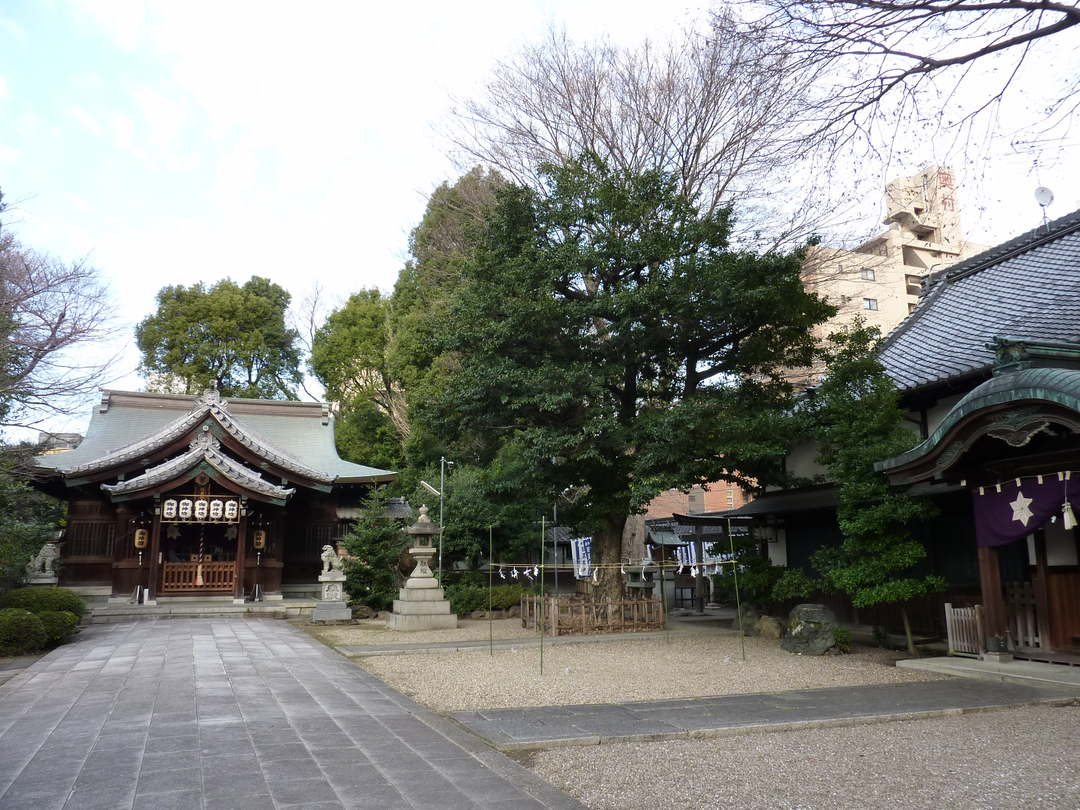 A spot to drop by #2 【Hioki Jinja Shrine】