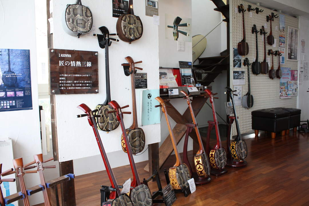 Various Sanshin are sold, from high quality items to those for educational use.