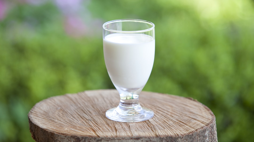 Luxurious deliciousness with fresh raw milk, dairy products of Takachiho Farm