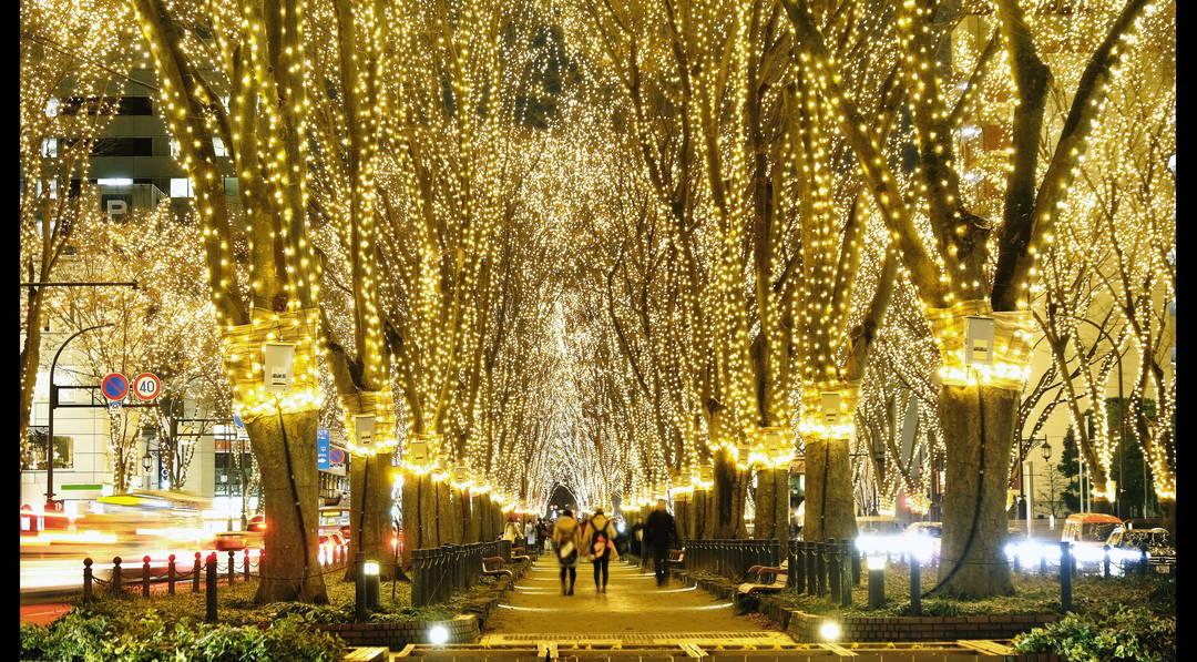 【仙台】ケヤキ並木が数十万球の光に包まれる!冬の一大イベント「SENDAI光のページェント」に出かけよう!