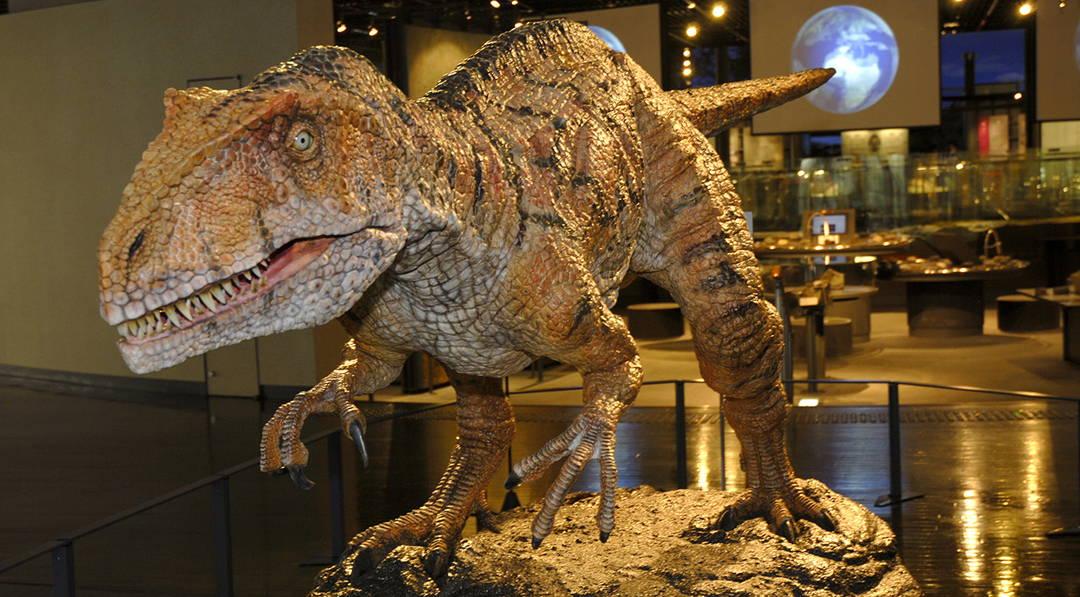 パニックに注意!? ド迫力の恐竜博物館を探検しよう【福井県立恐竜博物館】