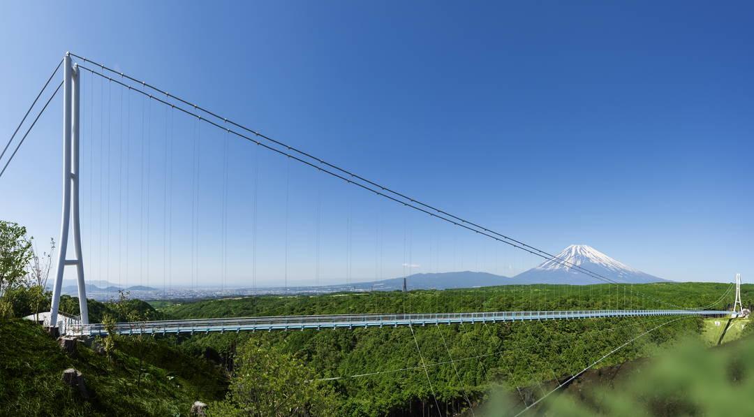 【日本一長い吊橋】落差70m!  三島スカイウォークで、富士山の絶景を堪能!