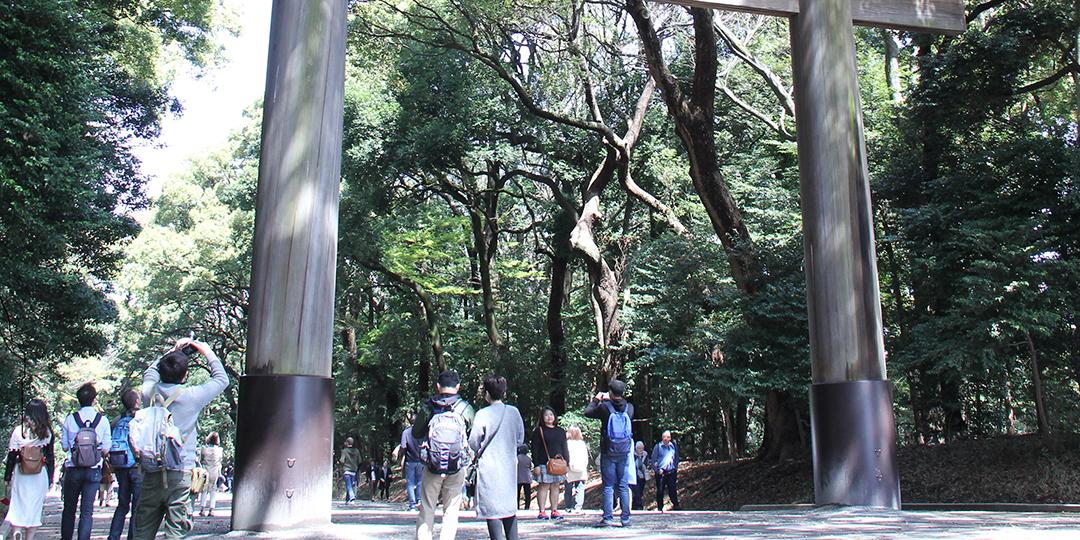 想親眼一見!日本最具代表性的神社