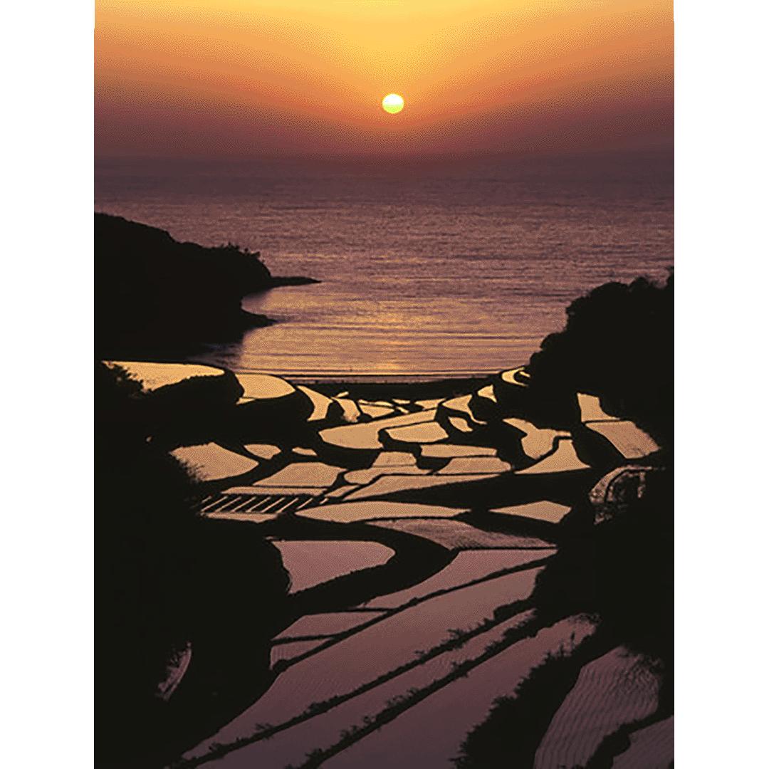 4月下旬~5月中旬夕陽浸染的情景是最精采的 濱野浦(hamanoura)梯田