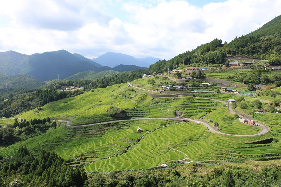 The largest rice terrace in Japan stretching out along Kumano Kodo Maruyama Senmaida