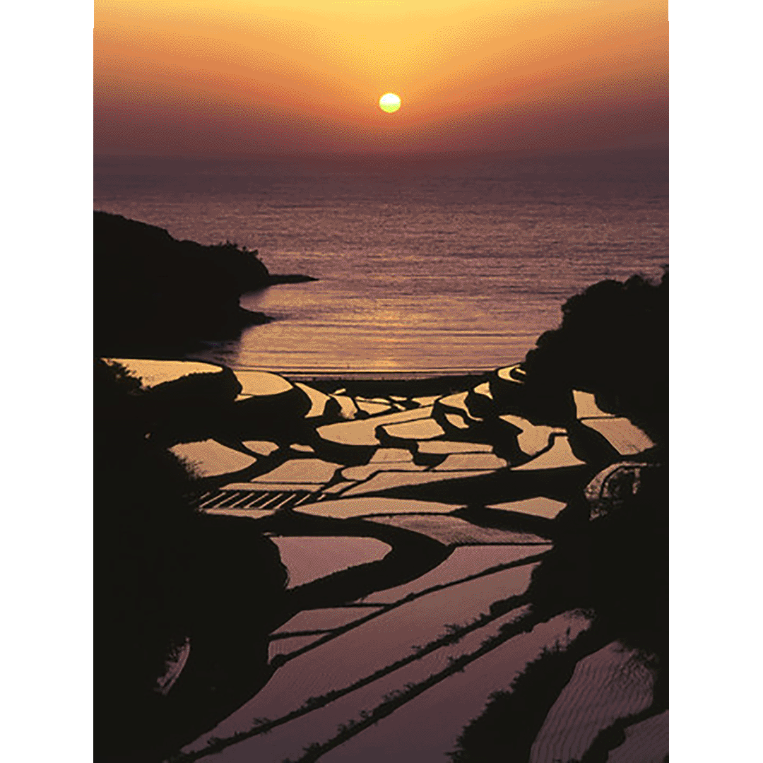The scenery stained with sunset in late April to mid-May is magnificent Rice terrace of Hamanoura