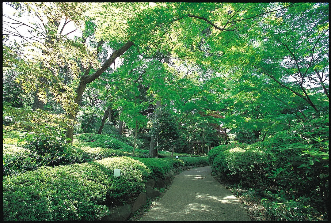 A garden where pure Japanese style and exotic historical sites coexist Sheraton Miyako Hotel Tokyo