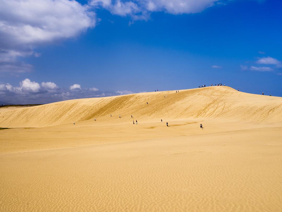 Tottori Sand Dunes (Tottori)