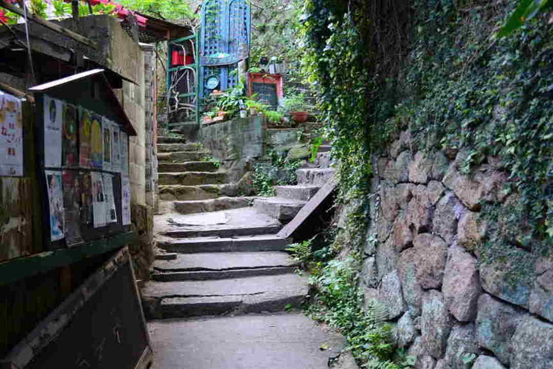 언덕길 도시 오노미치에서 고양이가 다니는 골목길을 산책