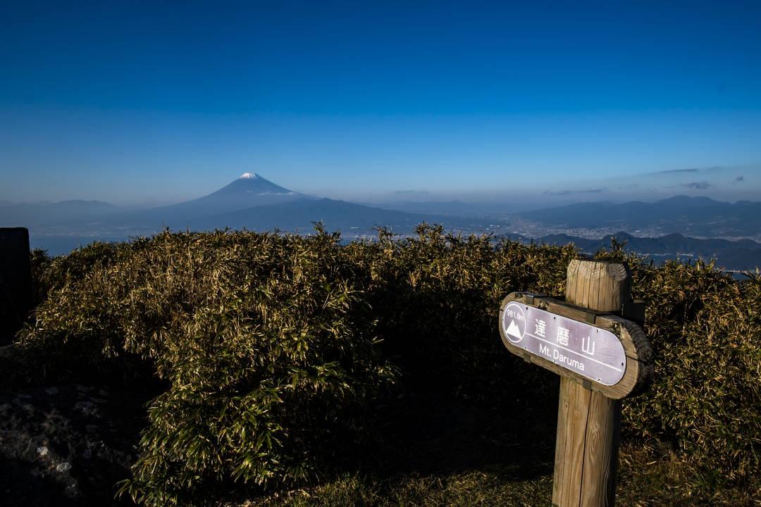 達磨山山頂までのアクセス