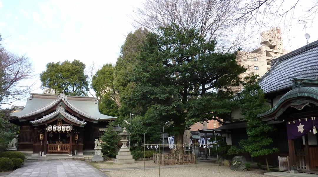 Hioki Jinja Shrine