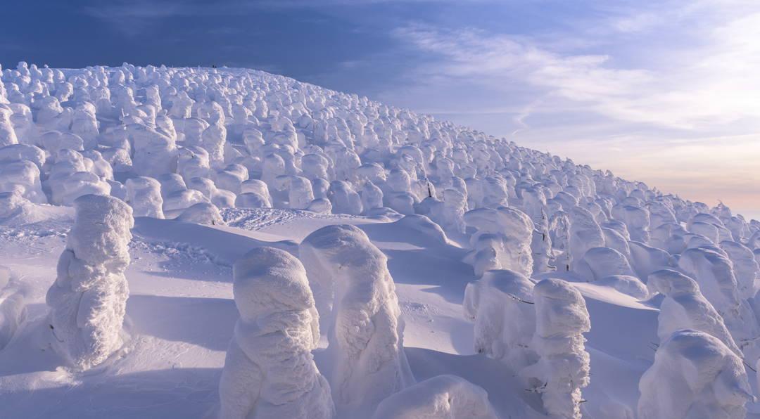 藏王的樹冰