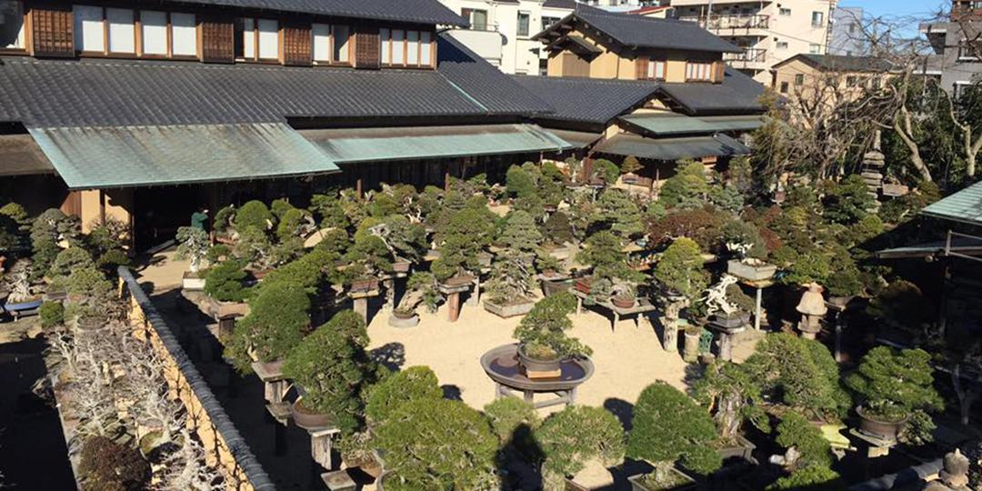春花園盆栽美術館