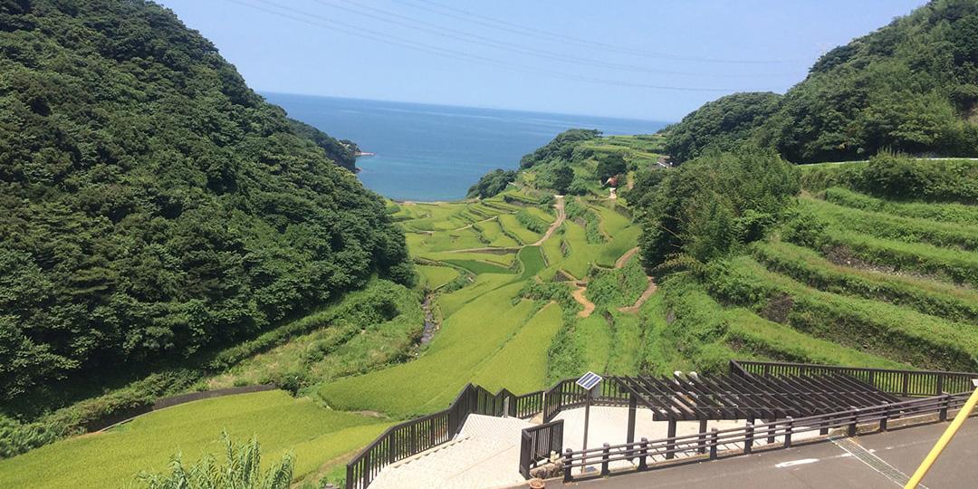 Rice terrace of Hamanoura