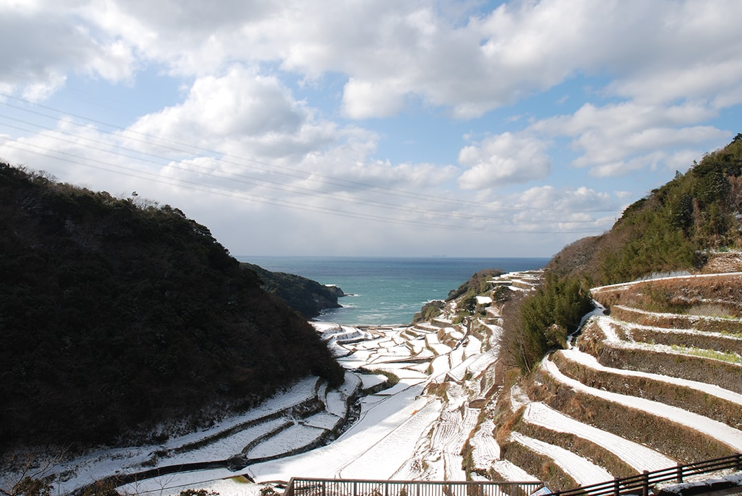 Rice terrace of Hamanoura